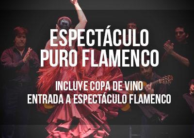 Visita guiada Puro Flamenco
