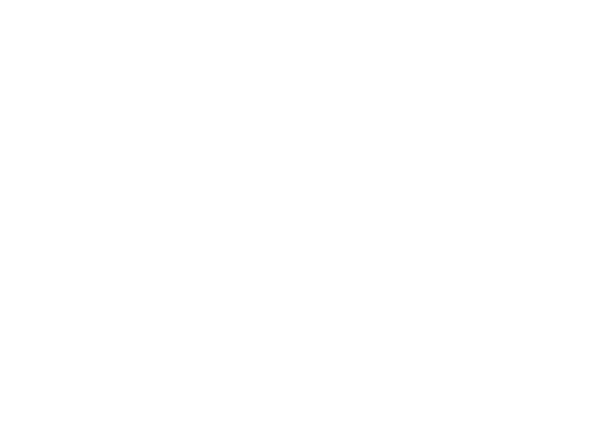 De Paseo Experience